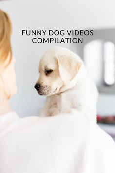Advertisement Baby dogs are amazing pets because they are the cutest and most funny. Watching funny baby dogs is the hardest try not to laugh challenge. It is funny and cute. This is the cutest and best video ever! Baby Dogs, Pet Dogs, Dogs And Puppies, Funny Dog Videos, Funny Dog Pictures, Animals Dog, Funny Animals, Funny Babies, Funny Dogs