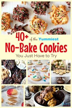 40+ of the Yummiest No-Bake Cookies You Just Have to Try - #easyrecipes #nobakecookies #sweets #treats #desserts Mom Does Reviews Pumpkin No Bake Cookies, Peanut Butter Banana Cookies, Chocolate Coconut Cookies, Low Carb Peanut Butter, Delicious Cookie Recipes, Best Cookie Recipes, Yummy Cookies, Sweet Recipes, Delicious Food