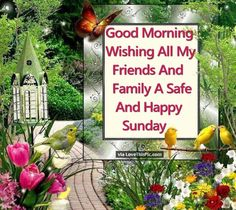 Good Morning Wishing All My Friends And Family A Safe And Happy Sunday good morning sunday sunday quotes good morning quotes happy sunday happy sunday quotes good morning sunday sunday quotes for friends beautiful sunday quotes sunday quotes for family Happy Sunday Pictures, Happy Sunday Quotes, Morning Greetings Quotes, Happy Saturday, Good Morning Good Night, Good Morning Wishes, Good Morning Quotes, Happy Morning, Sunday Morning