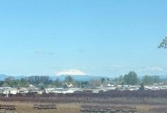 Mt Saint Helens as seen from Scapoose, OR