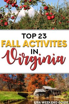 23 Things to Do in Virginia in the Fall | USA Weekend Guide | Get excited for fall with our ultimate guide to the best fall activities and places to visit in beautiful Virginia! Ready for fall? Explore a variety of fun, fresh ideas from a local to help you celebrate the coming season. Includes stunning fall road trip ideas and much more! #fall #thingstodovirginia #falltravel #virginia #fallroadtrip #falltraveldestinations