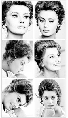 I have an obsession with Sophia Loren and Audrey Hepburn. Old Hollywood in general, actually! Carlo Ponti, Old Hollywood Glamour, Vintage Hollywood, Hollywood Stars, Classic Hollywood, Sophia Loren, Divas, Fred Astaire, Cinema