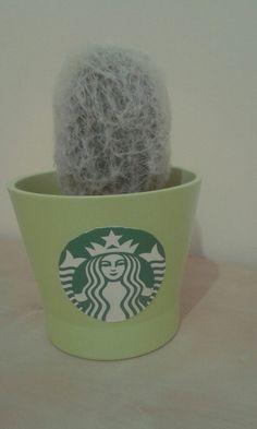 #starbucks#cactus :>