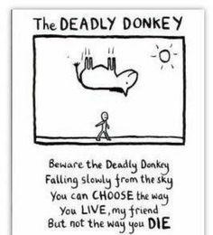 Deadly donkey or deadly john key?