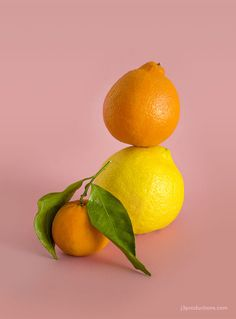 Lemon & Oranges on Pink ~ Mary Wald's Place - One of my goals for 2017 has been to just, do… more. I want to exercise the creativity and enjoy the process of experimenting. To begin, I've decided to start a new little series of sti… Happy Photography, Food Photography Styling, Dress Your Tech, Plus Size Fashion Blog, Curvy Swimwear, Big Girl Fashion, Curvy Fashion, Art Pictures, Art Pics