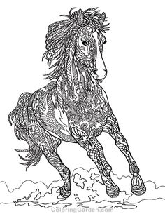 809 Best Animal Coloring Pages For Adults Images On Pinterest