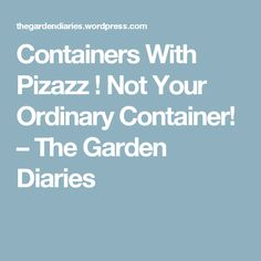 Containers With Pizazz ! Not Your Ordinary Container! – The Garden Diaries