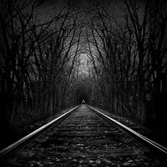 Would love to be on a train down this Black Track...