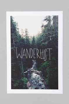 artwork inspiration - forest backdrop, but with scrolling font