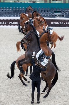 Cadre Noir Saut Hermès. Photo: Patrick Doussier.