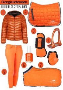 www.pegasebuzz.com | Equestrian Fashion : Orange Halloween