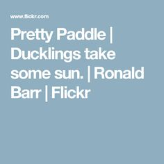 Pretty Paddle | Ducklings take some sun. | Ronald Barr | Flickr