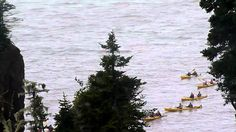 Kayak the Rocks - Baymount Outdoor Adventures Inc. What Is Geography, Hopewell Rocks, Excursion, New Brunswick, Whale Watching, Outdoor Adventures, Nova Scotia, Natural Wonders, Aerial View