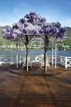 Beautiful pergola with wisteria at Lake Como in Italy.