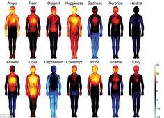Vemale.com - Saat kita jatuh cinta, ternyata ada hawa yang menghangatkan tubuh di area tertentu. Sementara ketika kita depresi, seluruh tubuh melemah. Lihat faktanya dalam sebuah foto berikut ini.