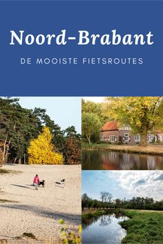 Netherlands, Holland, City, The Nederlands, The Nederlands, The Netherlands, Cities