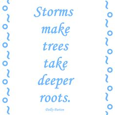 Storms make trees take deeper roots. https://instagram.com/the2.0life/