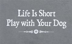 Life is short, play with your dog