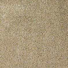 Stainmaster Pleasant Point Weathered Rectangular Indoor Tufted Area Ru