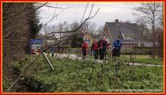 Surhuizum 30.12.2014S Slach om e tour - Albert Westra - Picasa Webalbums