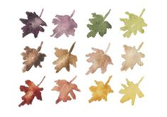 Lovely watercolor leaves.