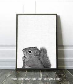 Hey, I found this really awesome Etsy listing at https://www.etsy.com/ca/listing/464699952/animal-photography-animal-nursery-print