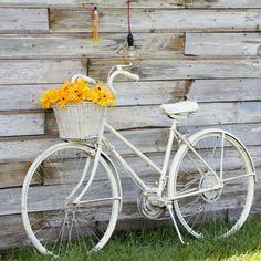 Vamos de Bike?