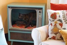 Turn that old TV in the garage into a raised cat bed. It's not only eco-friendly, it also helps kitty feel more secure by giving her an enclosed space that's up off the ground. This would look great in a retro decor scheme.