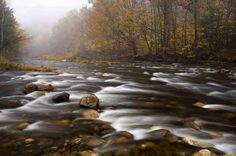 Westfield River, photo from Nature Conservancy