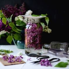 Lilac Flower Water - an edible lilac flower infused water for drinking or used as a facial mist {recipe}