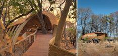 Sandibe Okavango: knappe lodge in de wildernis
