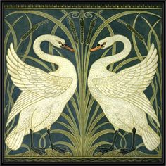Two Swans Framed Canvas Print
