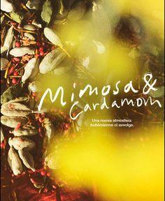 Mimosa e Cardamom. Una nuova atmosfera bohemienne ci avvolge.