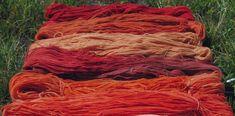 Rosso di Robbia è un laboratorio di tintura naturale dove vengono prodotti artigianalmente filati, tessuti, abbigliamento, accessori e tessile casa con l'utilizzo esclusivo di colori estratti da vegetali. Corsi e laboratori di: tintura naturale della lana (filato, tessuto, cardato); tintura naturale della seta e tecniche shibori; stampa vegetale su tessuto.