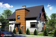 Projekty domów - Projekt domu z poddaszem POLO - wizualizacja 1