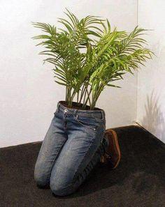 Pant Planter