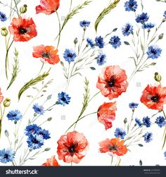 Poppy, Cornflower, Watercolor, Pattern Stock Vector Illustration 241885867 : Shutterstock