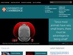 University of Cambridge Application Essays (College Admissions Essays) Writing…