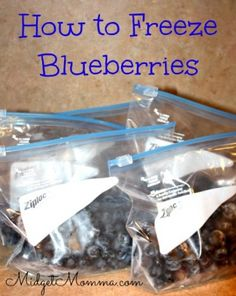 Blueberries are plentiful for picking and for snagging a great deal on in the store. Snag them at rock bottom prices and then freeze them and you will have blueberries all year long. It is really easy to freeze blueberries.