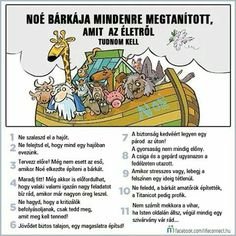 Everything I need to know about life, I learned from Noah's Ark Christian Humor, Christian Quotes, Christian Cartoons, Christian Faith, Christian Comics, Lessons Learned, Life Lessons, School Lessons, Life Skills