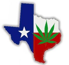 Texas Marijuana Penalty Reduction Bill Hearing Today | House Bill 184 is scheduled for a hearing today. The bill does not decriminalize marijuana in Texas, but the penalties for possession of up to an ounce would be reduced from up to 6 months in jail and a $2000 fine to a $500 fine with no jail time.
