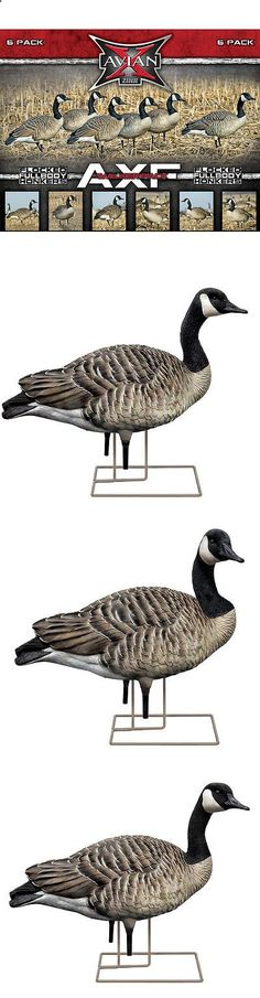 Decoys 36249: Fred Zink Avian-X Axf Full-Body Fully Flocked Canada Goose Decoys - Walkers 9029 -> BUY IT NOW ONLY: $334.99 on eBay!