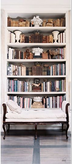 Super classy bookcase situation