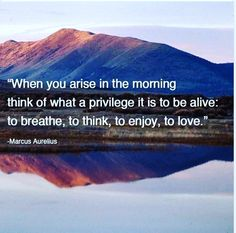 And have a wonderful day everyone! #revhealth #healthrev #goodmorning #picoftheday #goodday #wonderful #happy #motivation #inspiration #privilege #enjoy #love #breathe  #bealive #aurelius #quotestoliveby