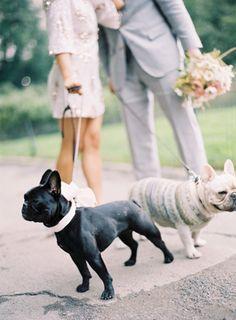 Bring your pups <3 [Jonathan Canlas]
