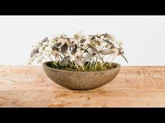 Orchid and Feather Festival   Flower Factor How To   Flower Arrangement - YouTube