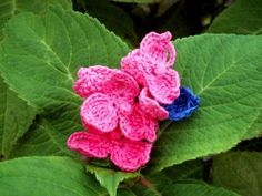 Crochet Hydrangea flower from the Meli Bondre Blog. This Irish woman took it upon herself to crochet a flower a day for a year! Such a great resource!