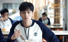 Drama A Love So Beautiful Episode 1-24 (Lengkap)
