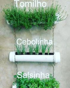 10 creative (and easy to copy) ideas for a vegetable garden .- 10 ideias criativas (e fáceis de copiar) para ter uma horta no apartamento Garden Planters, Herb Garden, Indoor Garden, Indoor Plants, Easy Garden, Garden Rake, Gutter Garden, Vertical Garden Diy, Vertical Gardens