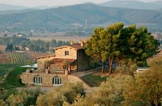 Hotel Conti di San Bonifacio, Italia # can I move here?